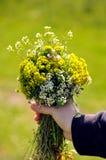 Main d'enfant avec des fleurs Photo libre de droits
