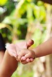 Main d'enfant et de mère Photographie stock libre de droits