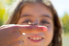 Main d'enfant jugeant le bogue de sauterelle macro Image stock