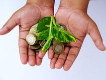 Main d'enfant tenant les pièces de monnaie et la petite usine Photos stock