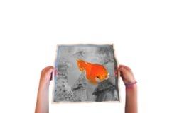 Main d'enfant tenant un poisson d'or Images stock