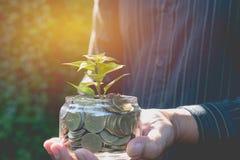 Main d'homme d'affaires tenant l'arbre et les pièces de monnaie dans financier en verre photo libre de droits
