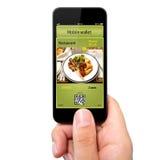 Main d'isolement d'homme tenant le téléphone avec un portefeuille et un tic mobiles Image libre de droits