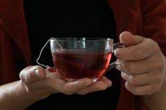 Main d'isolement de femme tenant une tasse de thé rouge chaud, fond blanc photo libre de droits