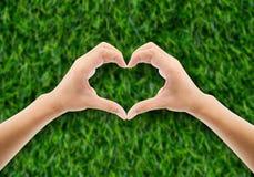 Main dans l'herbe sous forme de main de coeur tenant le vert Photographie stock libre de droits