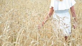 Main dans le domaine de blé clips vidéos