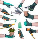 Main dans un gant tenant des outils de jardinage Photographie stock
