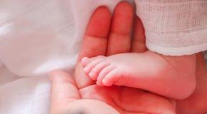 Main de bébé dans la main du ` s de maman Photographie stock libre de droits