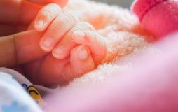 Main de bébé, main de bébé nouveau-né de courrier-terme image stock