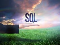 Main de Businesswomans présentant le mot SQL Photos stock