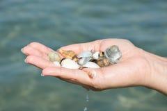 Main de femme avec des coquillages, vacances Photographie stock libre de droits