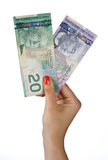 Main de femme avec les billets d'un dollar canadiens Photo stock