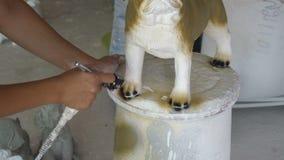 Main de femme dans des détails de statue de chien de roquet de peinture de gant banque de vidéos