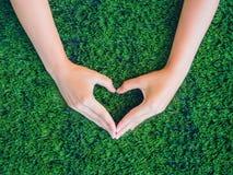 Main de femme dans la forme du coeur sur le fond d'herbe verte Photo stock