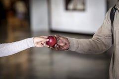 Main de femme donnant une pomme à un sans-abri Photographie stock