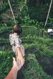 Main de femme de participation de main d'homme sur le fond de gisement de riz Île de Bali, Indonésie, Ubud, terrasse de Tegalalan image libre de droits