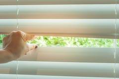 Main de femme prenant une crête par les abat-jour de fenêtre Photographie stock