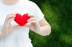 Main de femme tenant la peluche un coeur rouge à la gauche son coffre Photos libres de droits