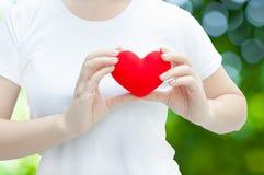 Main de femme tenant la peluche un coeur rouge à la gauche son coffre, concept de Saint Valentin Image stock