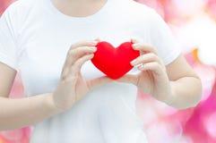Main de femme tenant la peluche un coeur rouge à la gauche son coffre sur le fond rose Images stock