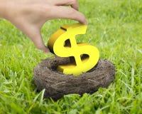 Main de femme tenant le symbole dollar d'or dans le nid Image stock