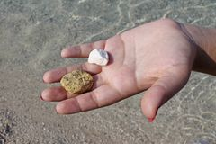 Main de femme tenant de petites pierres sur la plage photographie stock libre de droits