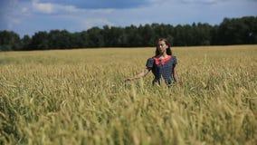 Main de fille dans le domaine de blé clips vidéos