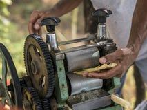 Main de l'homme serrant le jus de la canne à sucre Utilisant le mécanisme manuel pour cela photographie stock