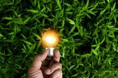 Main de personne tenant l'ampoule sur l'herbe pour solaire, énergie, photographie stock libre de droits