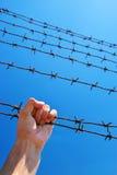 Main de prison photo libre de droits