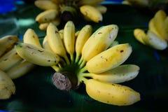 main des bananes, fruit thaïlandais tropical Photos libres de droits