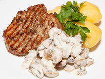 Main dishes Royalty Free Stock Image