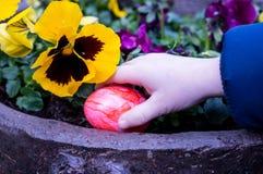Main du ` s d'enfant saisissant un oeuf de pâques photographie stock libre de droits