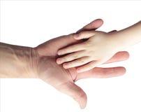 Main du ` s d'enfants dans une paume du ` s d'homme d'isolement Photographie stock