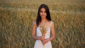 Main du ` s de femme fonctionnant par le champ de blé Plan rapproché émouvant d'oreilles de blé de main du ` s de fille Concept d clips vidéos