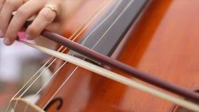 Main du ` s de Madame jouant le violoncelle banque de vidéos