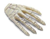 Main en plastique d'os image libre de droits