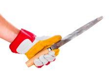 Main enfilée de gants avec le fichier photographie stock libre de droits
