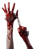 Main ensanglantée tenant la chaîne, chaîne ensanglantée, thème de Halloween, fond blanc, d'isolement Photo stock