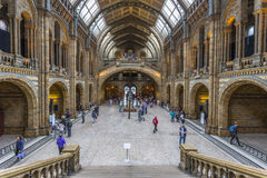 The main entrance hall of the Natural History Museum in London Stock Photo