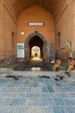Main Entrance Jama Masjid Srinagar Kashmir Stock Photo