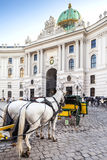 Main entrance to Hofburg palace in Vienna, Austria. Stock Image
