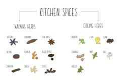 Main-a esquissé une grande collection d'éléments chauffant et refroidissant des épices dans notre cuisine Herbes et suppléments p illustration de vecteur