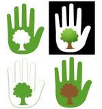 Main et arbre Photographie stock libre de droits