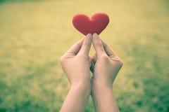 Main et coeur Photo libre de droits