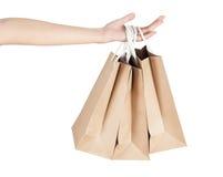 Main et sacs à provisions Photo stock