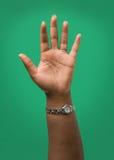 Main femelle augmentée photographie stock libre de droits