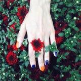 Main femelle avec des fleurs Photo libre de droits