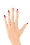 Main femelle avec la conception de clou d'ombre sur le fond blanc Photos libres de droits