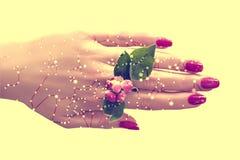 Main femelle avec le vernis ? ongles rose et fleurs entre les doigts Constellations, carte d'?toile Astronomie de la Science, car photographie stock